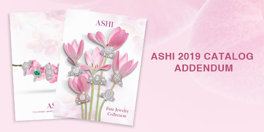 2019 Catalog Addendum